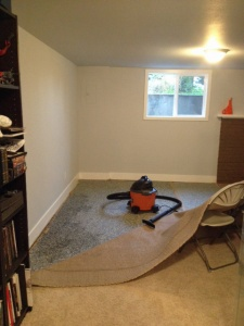 See the wall along the left of the room that's slightly discolored. That's our trouble spot.