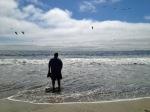 darcy sea